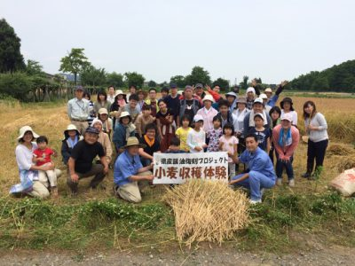 <報告>小麦収穫体験in小千谷市鴻巣!